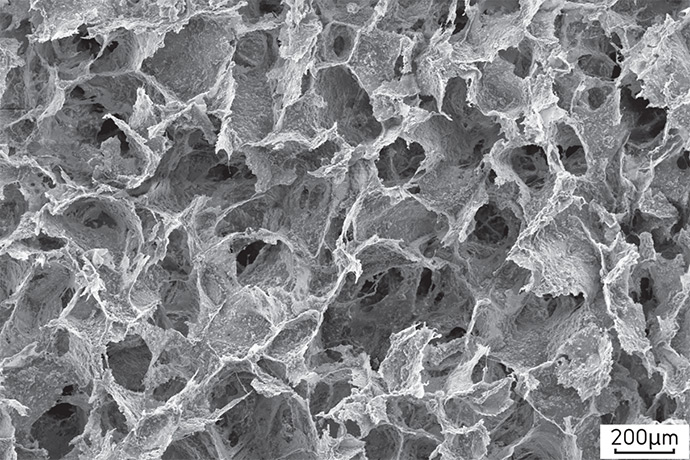 Cellular Materials Fig. 8.9