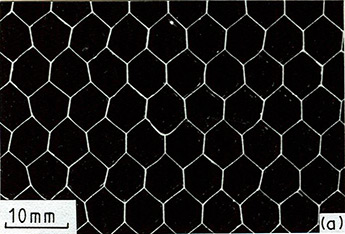 Cellular Solids Fig. 2.3a