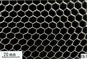 Cellular Solids Fig. 2.3b
