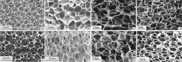 Cellular Solids Fig. 2.5